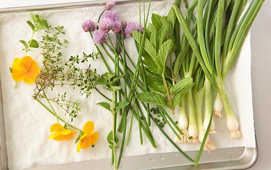 fresh cut herbs
