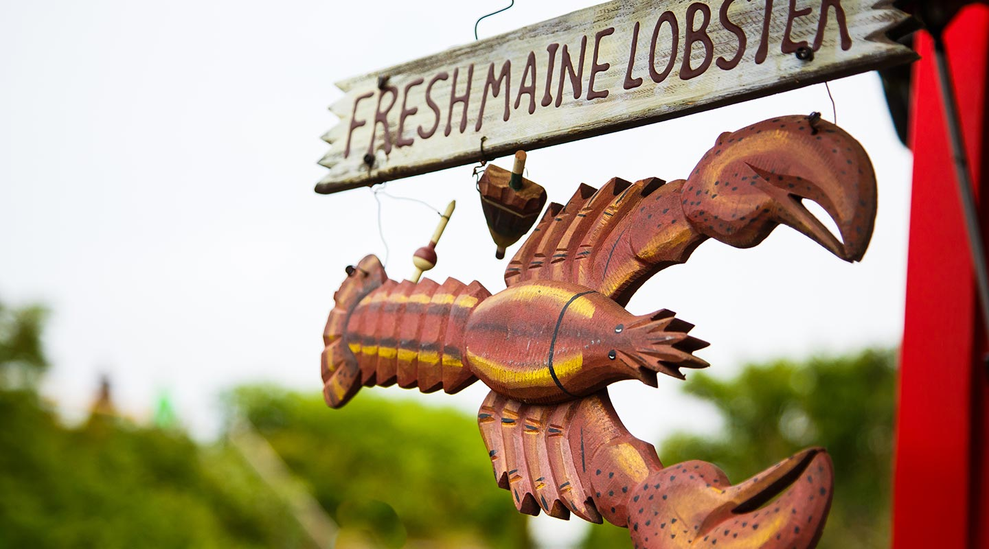 Enjoy fresh lobster in Maine